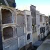 Recuperación de nichos de la calle Sta Rosa y traslado de restos